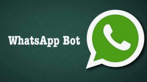whatsapp-bot-search-engine-wiki-internet-wikipedia-on-whatsapp