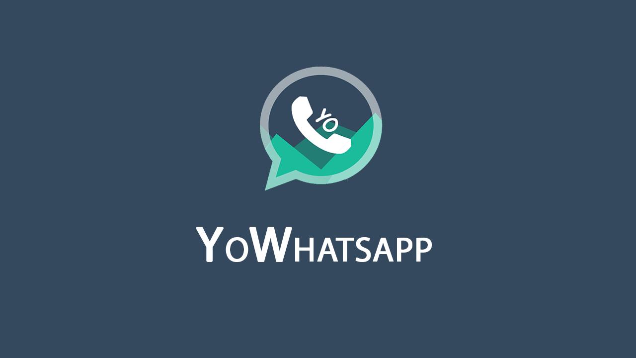 YOwhatsapp2