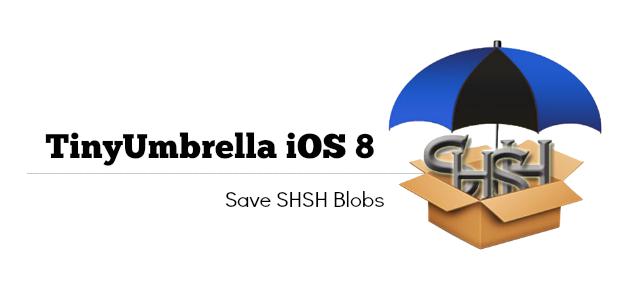 tinyumbrella-application-for-iOS