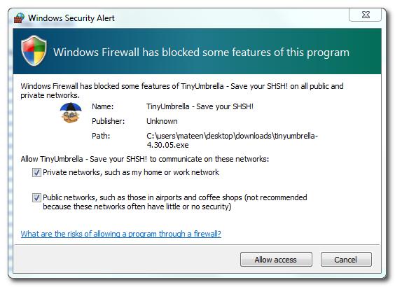 tinyumbrella-for-windows-errors