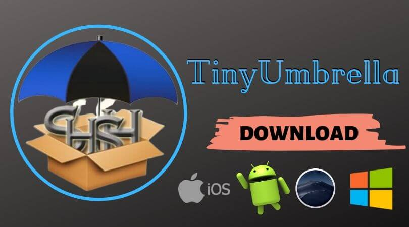 tinyumbrella-application